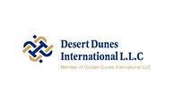DDI Logo Clear
